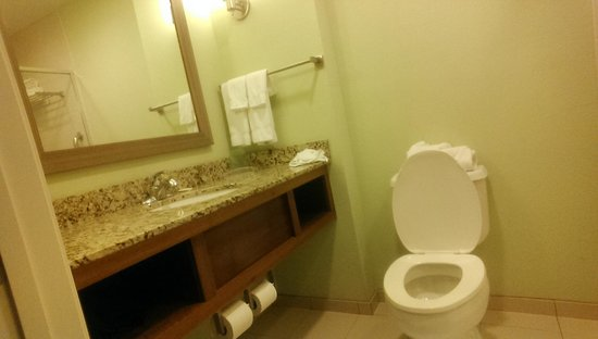 Holiday Inn Resort Pensacola Beach : Sink and Toilet