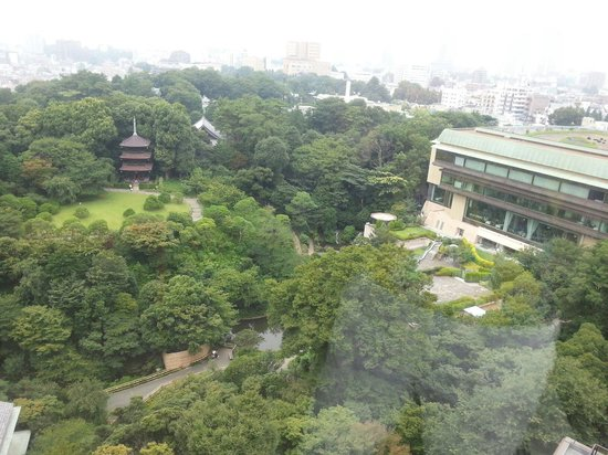 Hotel Chinzanso Tokyo : hotel view from 12th floor