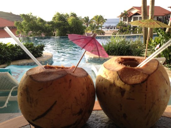 Sandals LaSource Grenada Resort and Spa: More Coconuts From Marcus back yard!