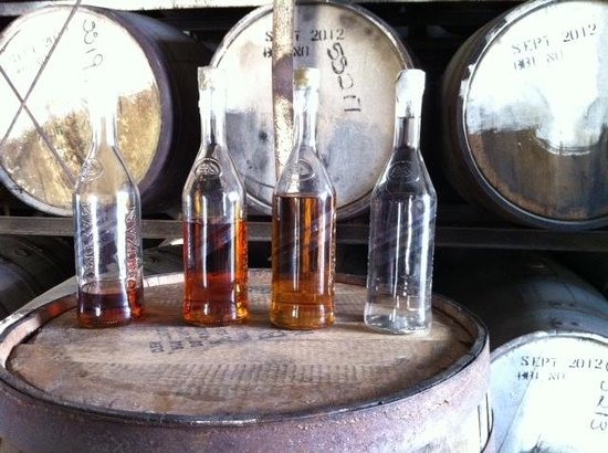 Cruzan Rum Distillery: Bottles showing rum aging process.