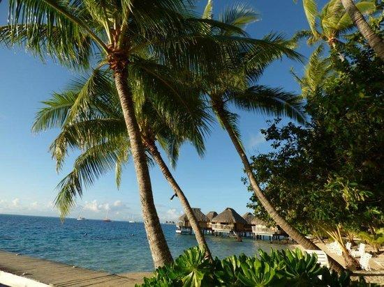 Maitai Polynesia Bora Bora: beach
