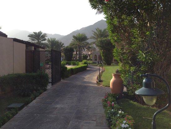 Miramar Al Aqah Beach Resort: Дорога от моря к ресторану