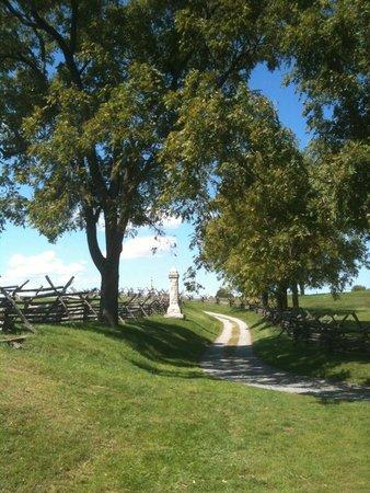 Antietam National Battlefield: Scene along the sunken road (Bloody Lane)