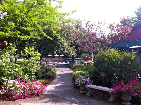 Best Western Sunridge Inn: garden & pool