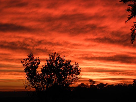 Hunter Valley Resort: Sunset