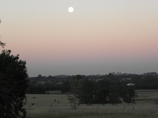 Hunter Valley Resort: Peace in the Valley