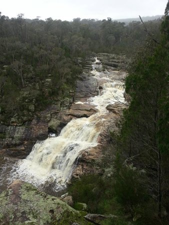 Mt. Pilot National Park: woolshed falls