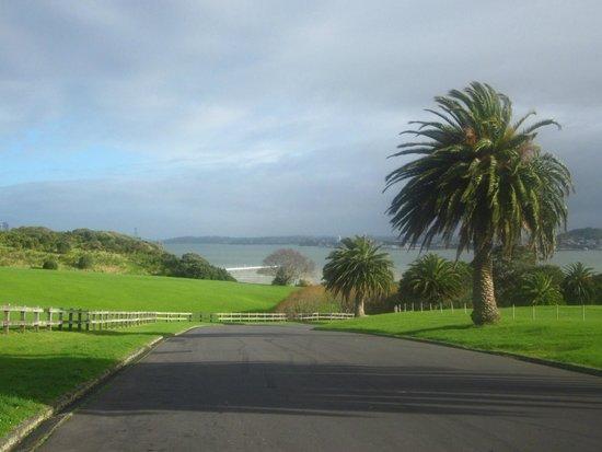 MJ Savage Memorial Park : Mission Bay