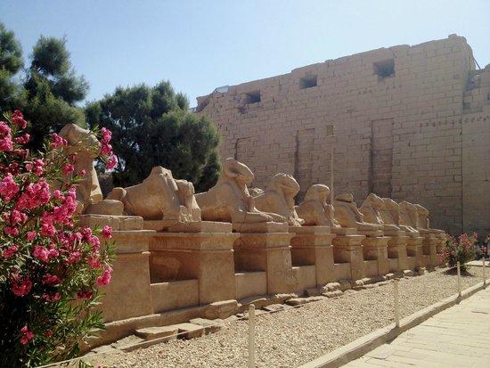 Karnak Open Air Museum: На входе в комплекс