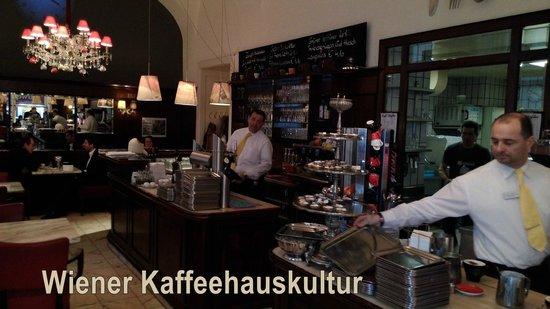 Café Diglas: Kaffehauskultur