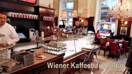Café Diglas: Kaffeehauskultur