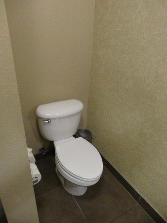 Oxford Suites Silverdale: Toilet....