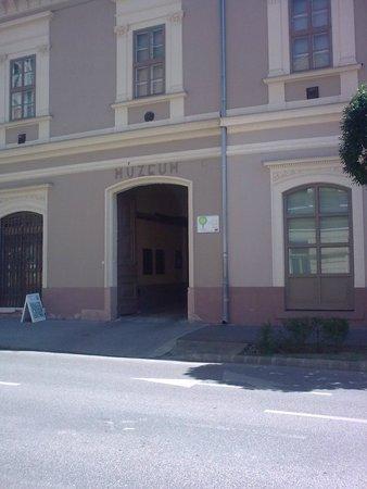Baja, Ungheria: Turr Istvan Muzeum