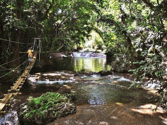Eden on the River: bridge walk