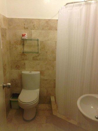 Mermaid Resort : シャワーとトイレ