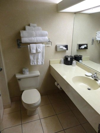 Best Western Plus Oak Harbor Hotel and Conference Center: Bathroom.