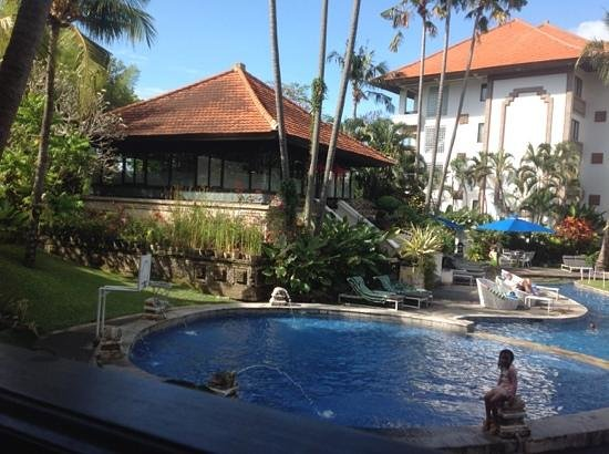 Sanur Paradise Plaza Suites : view fro our room