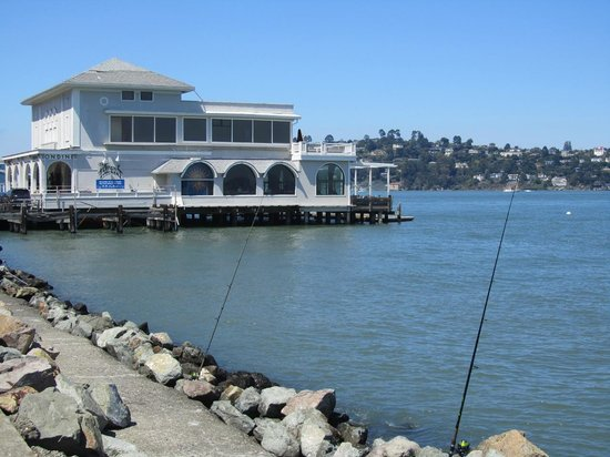 Dylan's Tours: In Sausalito