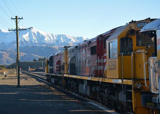 TranzAlpine Train: Tranz Alpine train