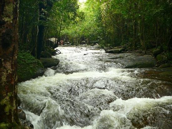 Phu Quoc Waterfall : upstream