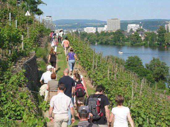 Weingut Schwaab