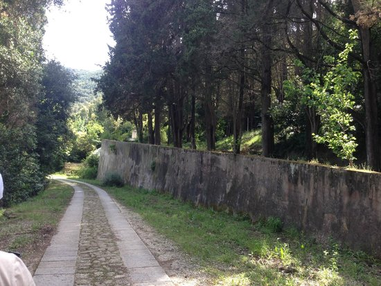 Villa of San Martino: Сад