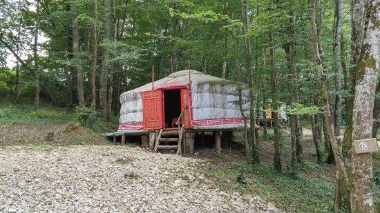 Yourte and Spa : Notre yourte dans la forêt