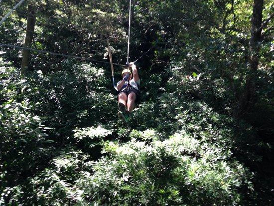 Guanacaste Viajes & Tours: Zip line