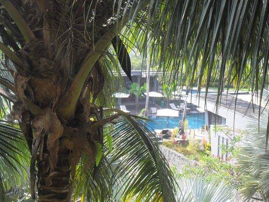 Novotel Palembang Hotel & Residence: Kolam Renang