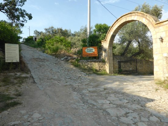Ongen Country Hotel : The entry, note the state of the road