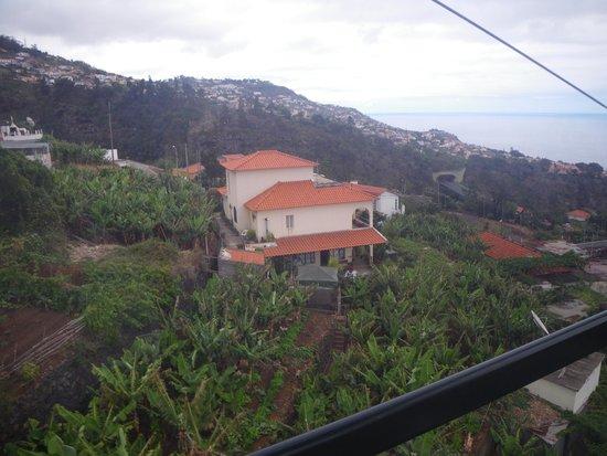 Téléphérique de Funchal : vue de la cabine