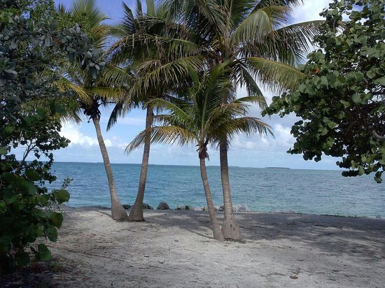 Fort Zachary Taylor Historic State Park: Scenic