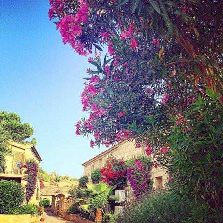 Club Med Kamarina : village