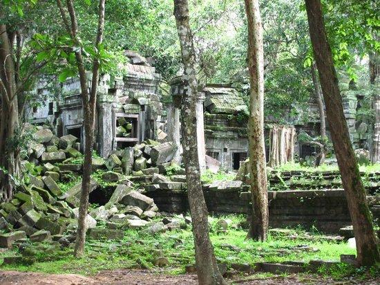 Siem Reap Province, Cambodia: Beautiful