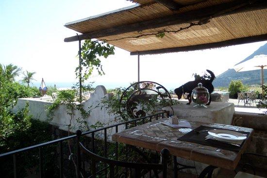Hotel Signum : Signum Terrace