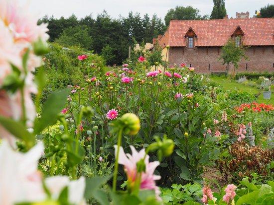 Bloem En Tuin : Prachtige bloementuin foto van kasteelhoeve de kerckhem hasselt