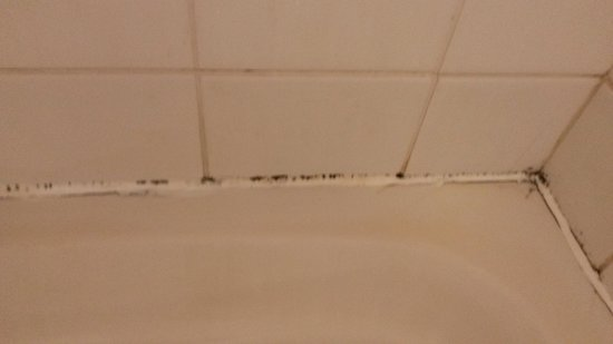 Hythe Imperial: shower mould
