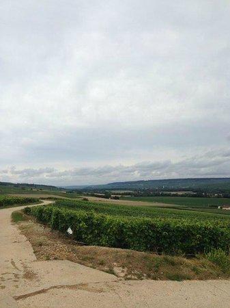 Office de Tourisme Epernay Pays de Champagne