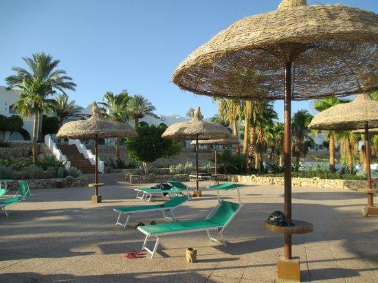 Domina Coral Bay Oasis : бассейн