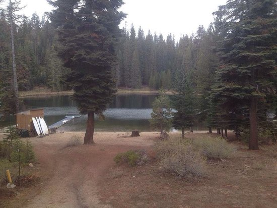Montecito Sequoia Lodge: The view from our room