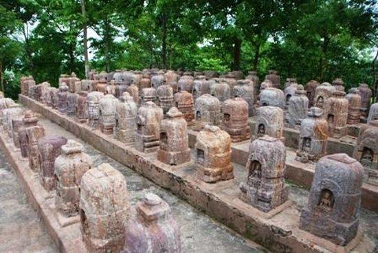 Ratnagiri Buddhist Excavation: Over 130 votive stupas have been arranged neatly!!