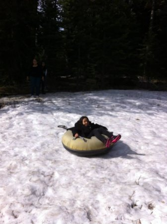 Montecito Sequoia Lodge & Summer Family Camp: Kids had fun in the snow