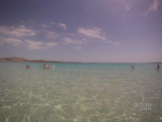 La Pelosa Beach: mare