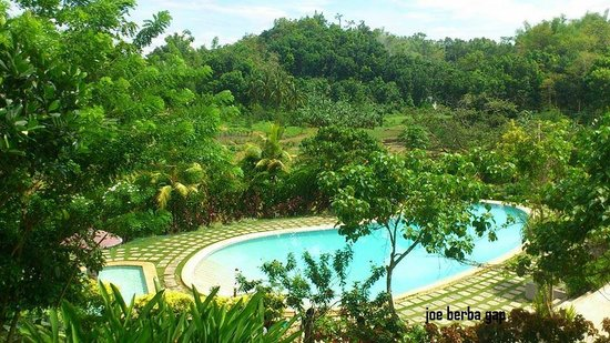 Damires Hills Tierra Verde: The View