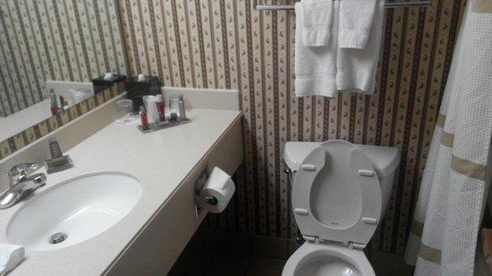 Cincinnati Airport Marriott: Bathroom looks clean