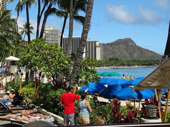 Outrigger Waikiki Beach Resort: View from Sun Terrace