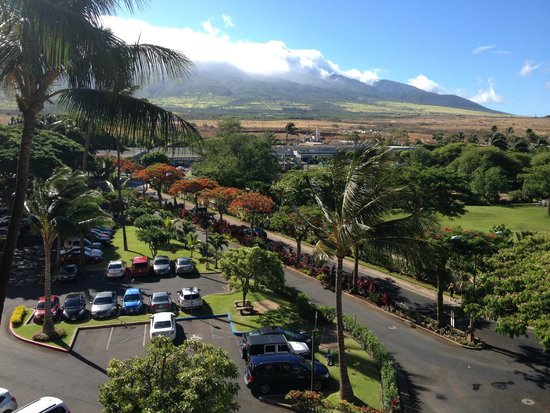 Aston Kaanapali Shores : View off the front hotel walkway