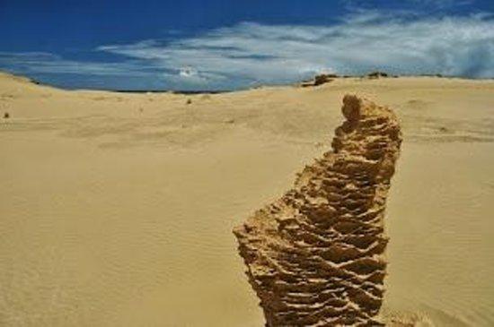 Te Paki Sand Dunes : Sand statues