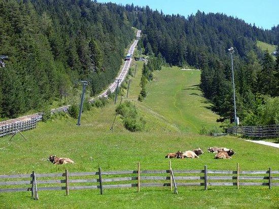 Rosshütte: Cablecar parting the base station