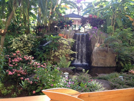 Aston Kaanapali Shores : Some of the beautiful landscaping
